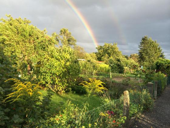 Regenbogen über Anlage