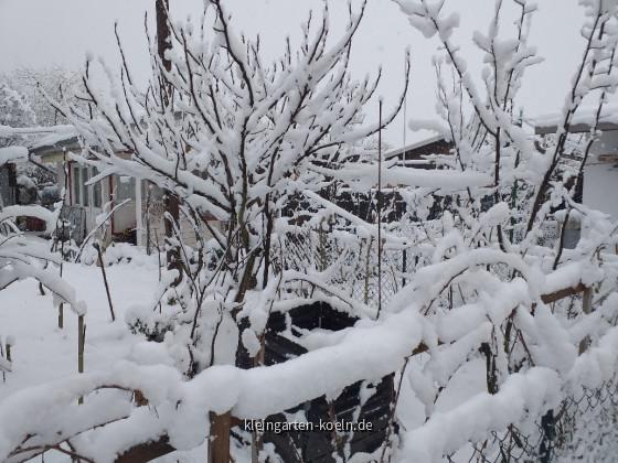 So schön kann der Garten im Winter sein